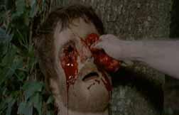 zombieholocaust2